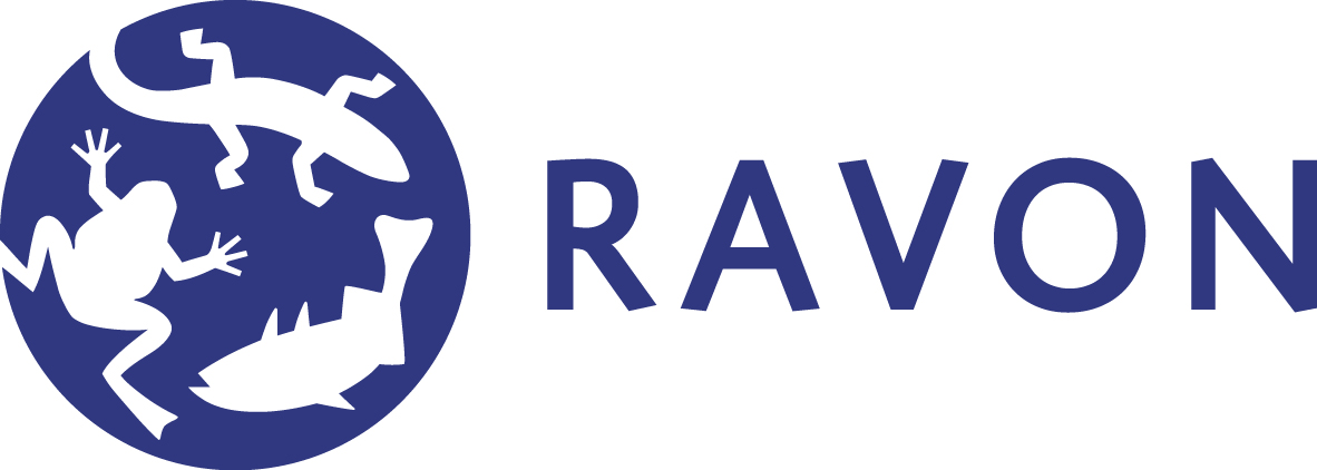 Image result for ravon logo