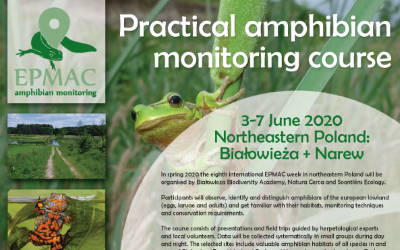Practical amphibian monitoring course